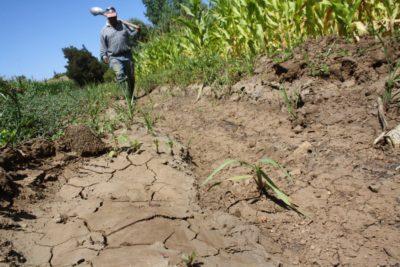 Pyme, solución para un campo sin agua.